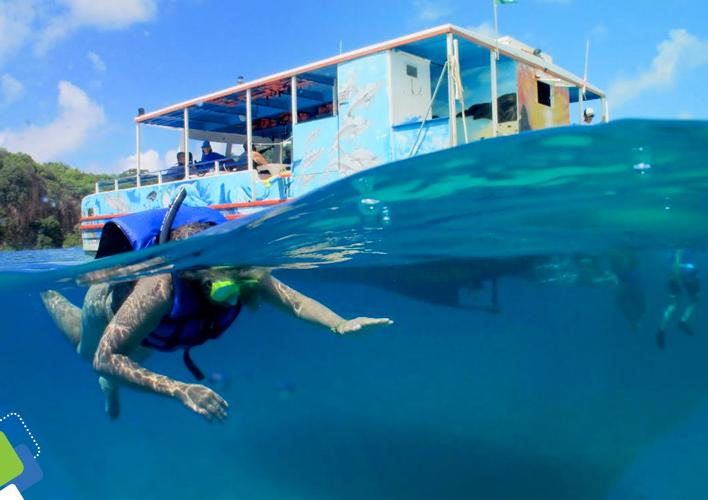 Em nosso passeio de barco paramos na praia do Sancho para que você possa mergulhar no mar azul e calmo.