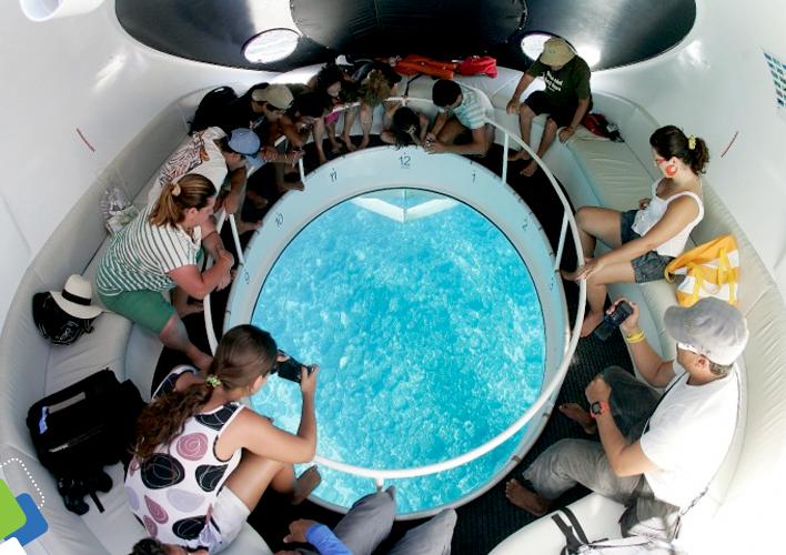 Através da lente especial do barco, é possível observar toda a vida marinha que passa por ele. É como estar dentro do mar sem se molhar.