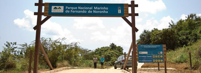 Taxa Fernando de Noronha_atalaia_6