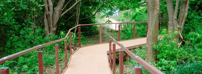 Parque Nacional Marinho de Fernando de Noronha_atalaia_4